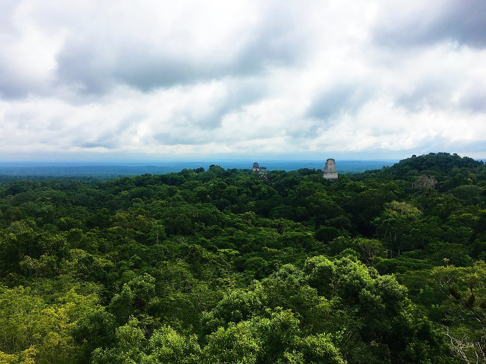 The view from Temple IV.   For the Star Wars trivia buff, this location is used in Yavin 4 in Star Wars: Episode 4 A New Hope.