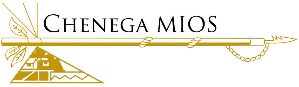 Chenega MIOS Logo.jpg