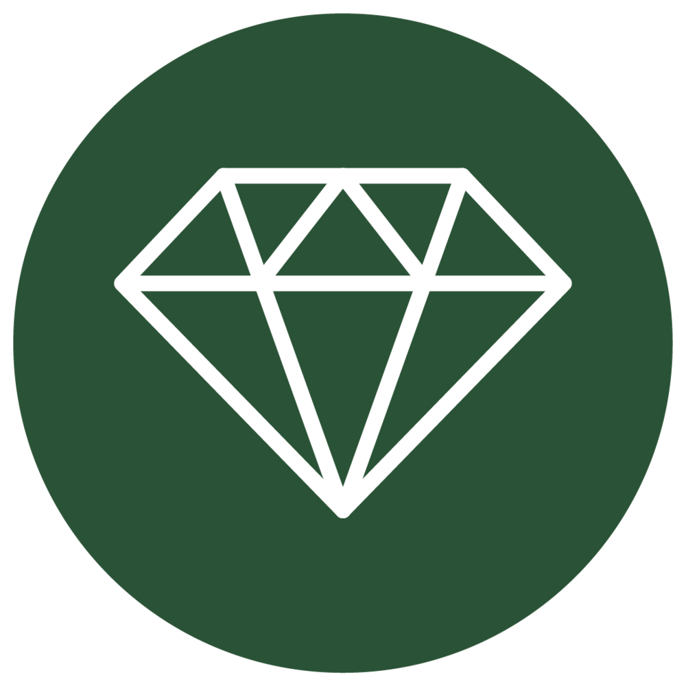 PPF icon_R2B_0402018-03.png