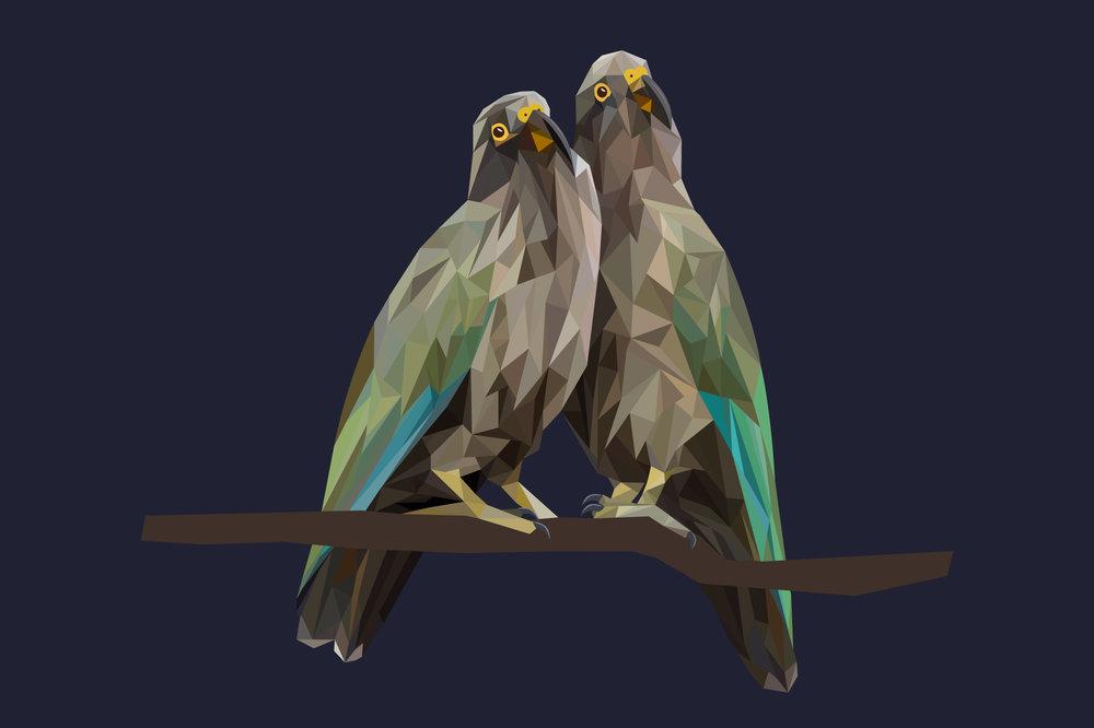 Geometric Bird Series