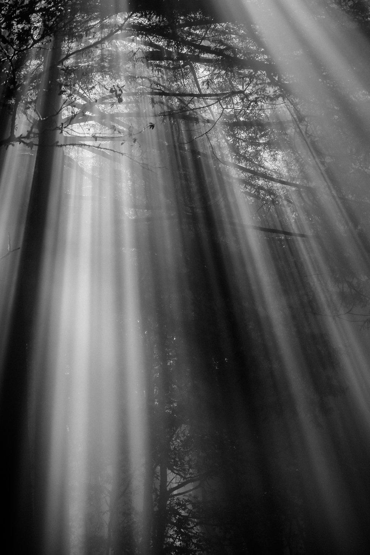 light7.jpg