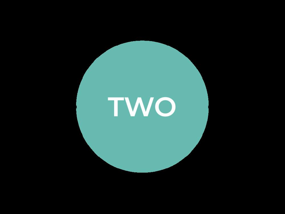 LevelTwo_Timeline_SVPD2018_Selected.png