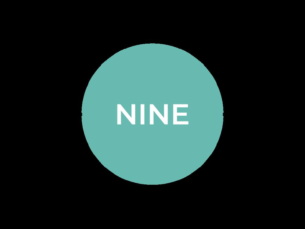 LevelNine_Timeline_SVPD2018_Selected.png