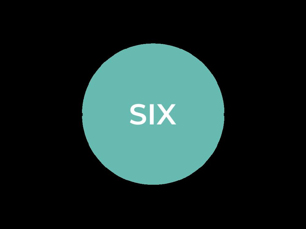 LevelSix_Timeline_SVPD2018_Selected.png