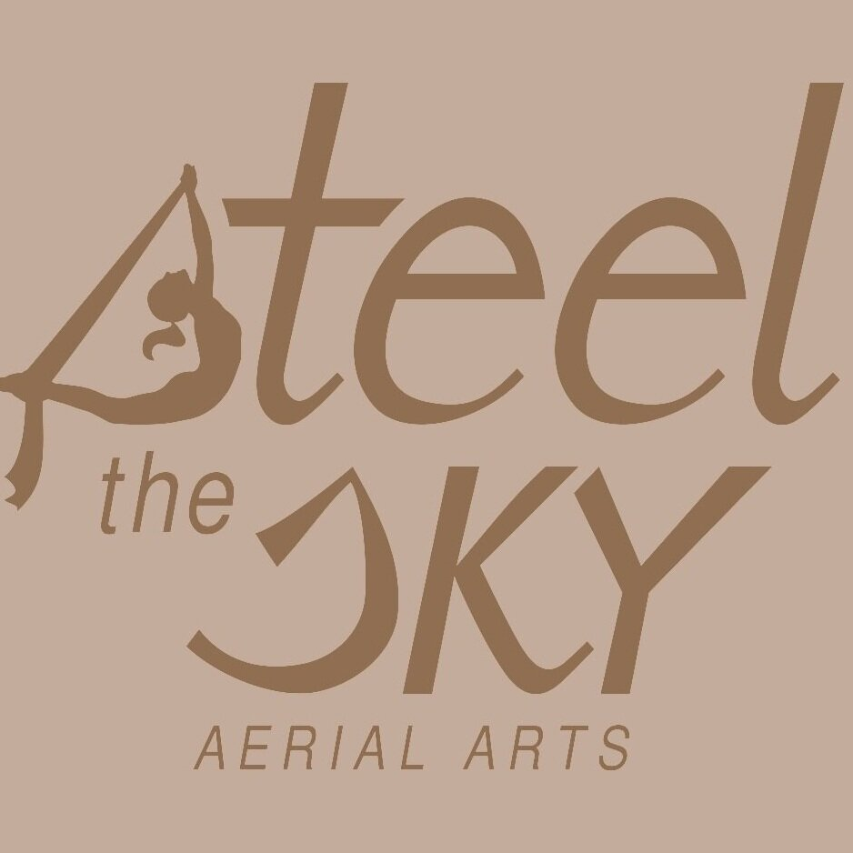STEEL THE SKY aerial arts