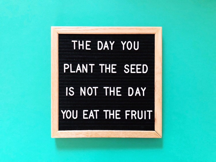 the-day-you-plant-the-seed-is-not-the-day-you-eat-the-fruit-wise-words-on-black-message-board-great_t20_GJeKxw.jpg