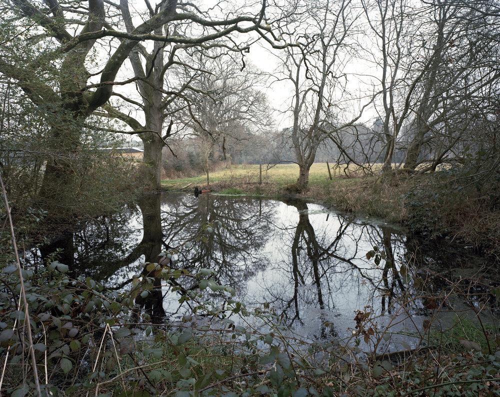 pond3web.jpg