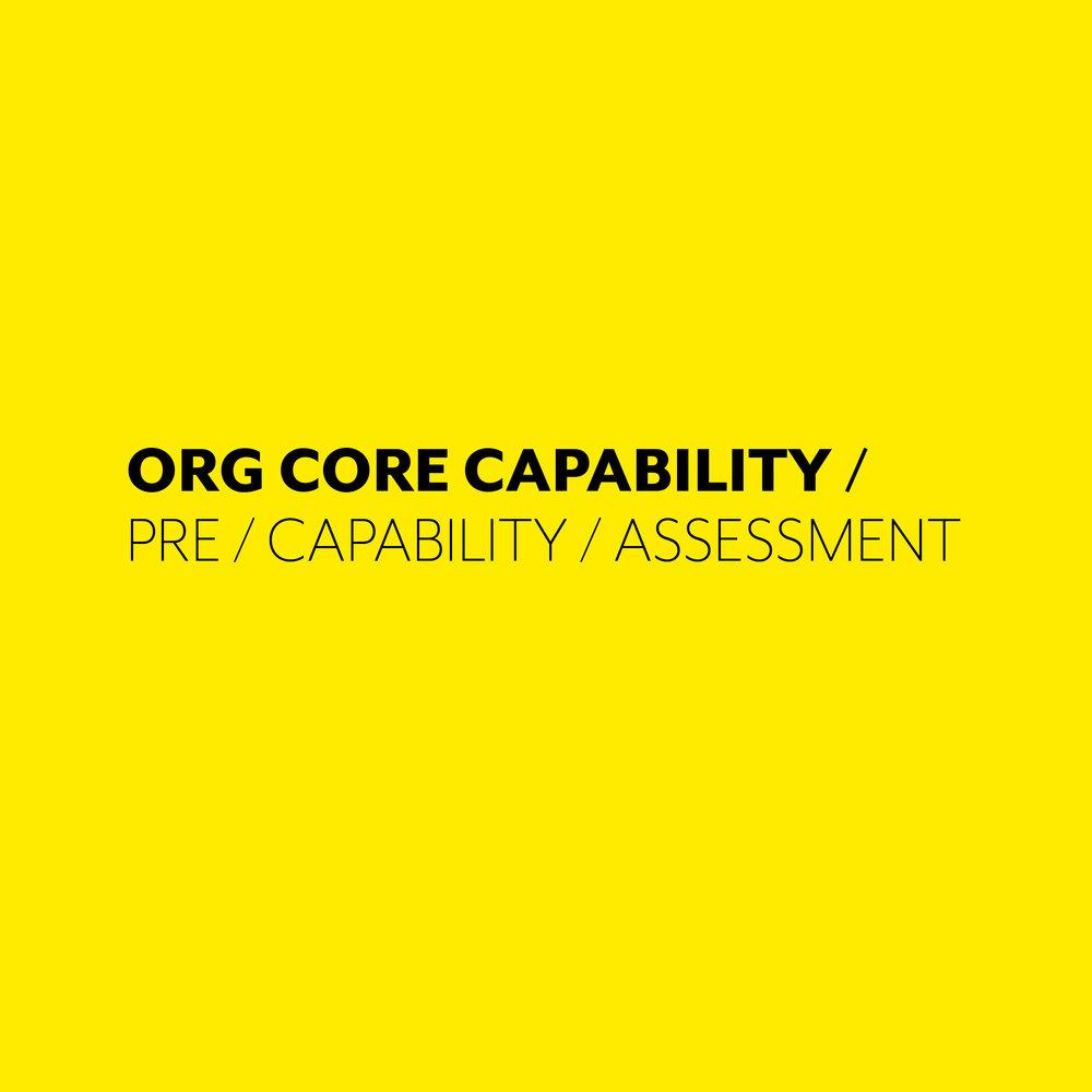ORG CORE CAPABILITY ASSESSMENT.jpg