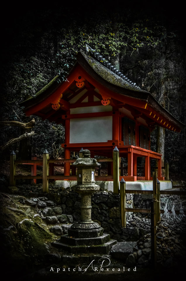Nara-woodlands.jpg