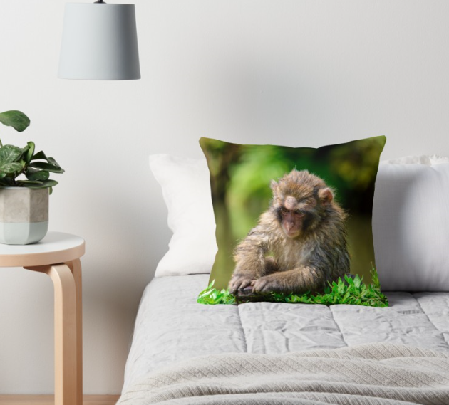 Monkey bed.PNG