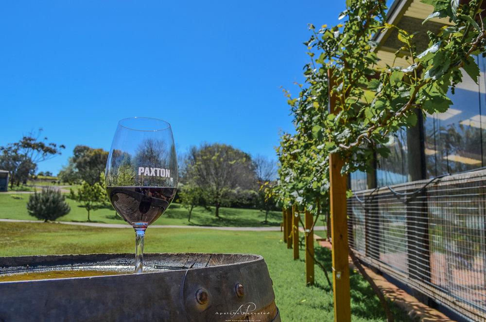 SA Wines_-9.jpg