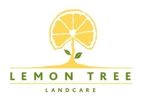 Lemon Tree Landcare