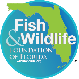 FWFF Logo with website.png