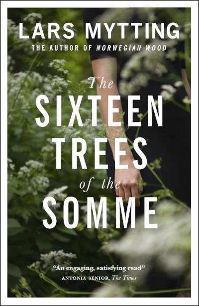 Sixteen_Trees_MMP.jpg
