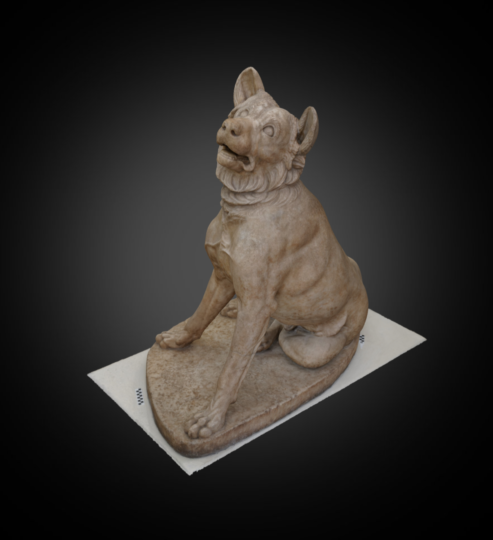 Molossian Dog - Inv. #: 65/ Man. #: 48 / Material: Pentelic Marble