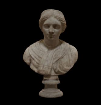 Female Bust / n. 228