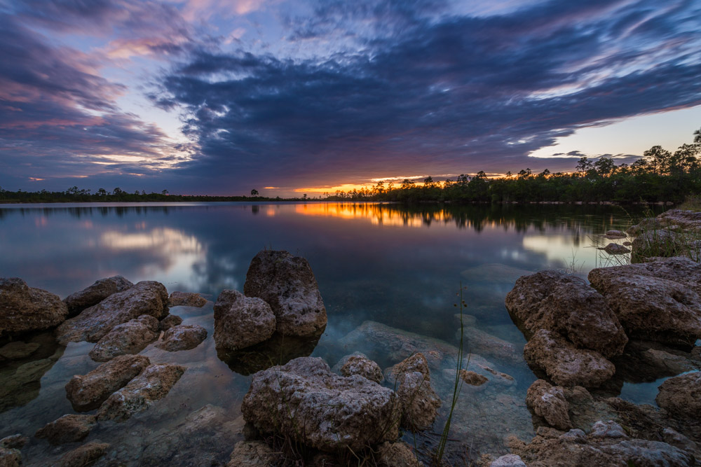 Everglades (706 of 711).jpg