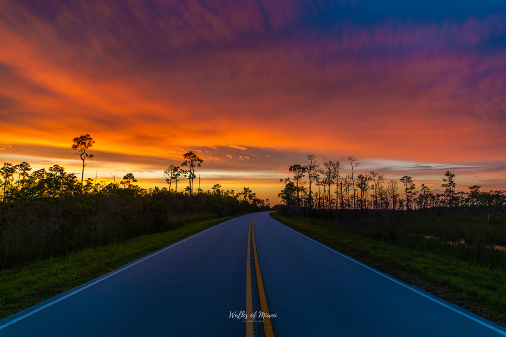 The Everglades Sunset Tour