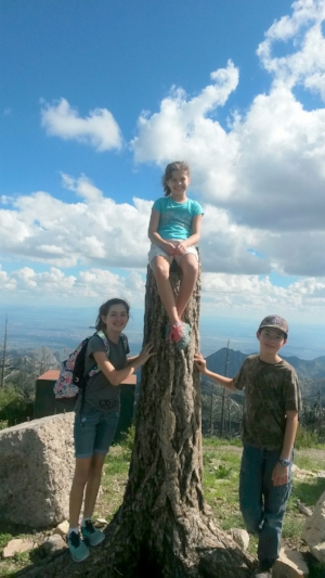 The Grandkids that live in Tucson, Arizona