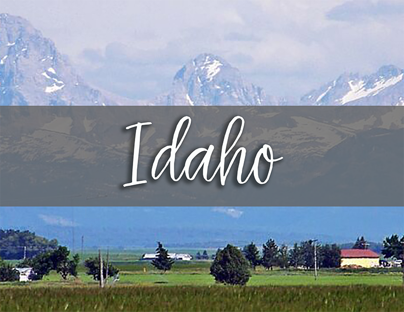 IDaho state tab copy.png