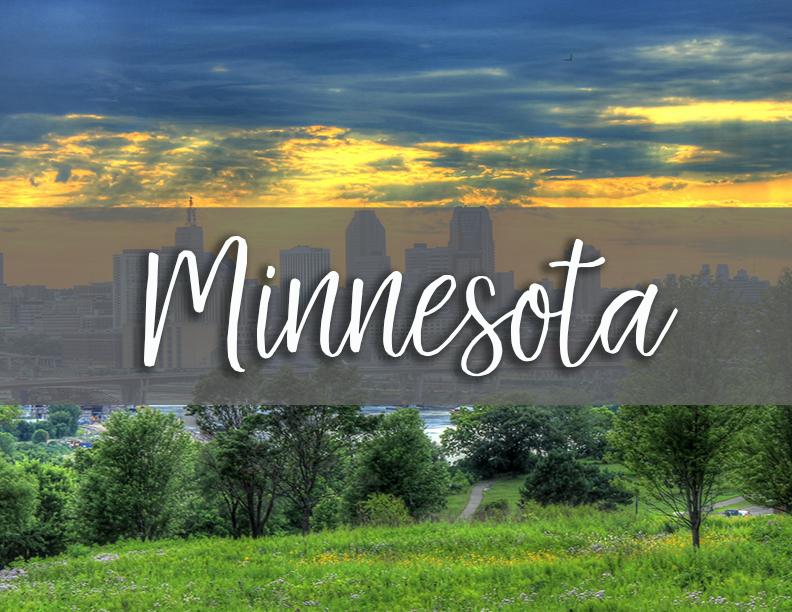 Minnesota state tab copy.png
