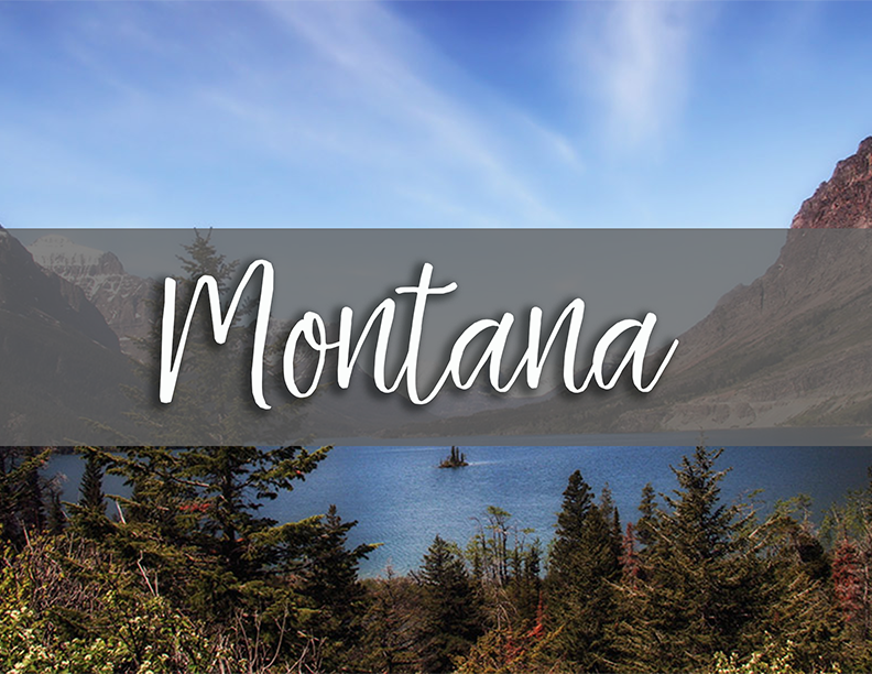 Montana state tab copy.png