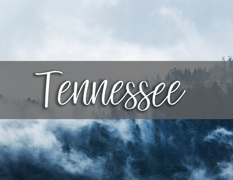tennessee state tab copy.png
