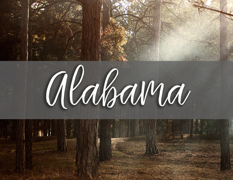 1 Alabama tate tab.png