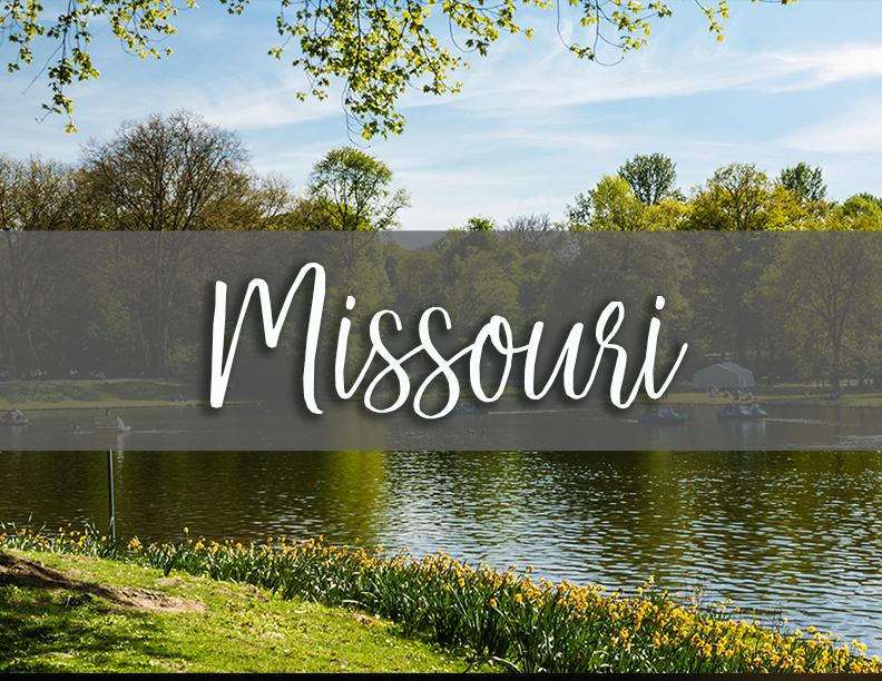 1 Missouri state tab.png