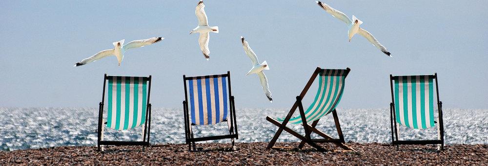 1 Florida summer-beach-seagulls-deckchairs.jpg