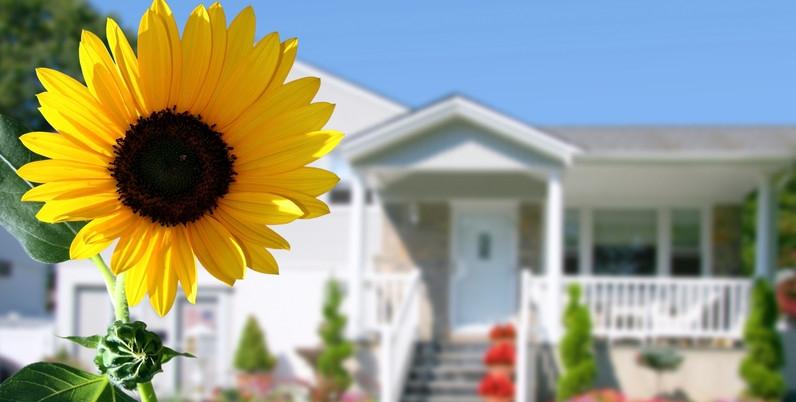 Stella Croxon Home Loans San Fernando Valley canstockphoto113647.jpg