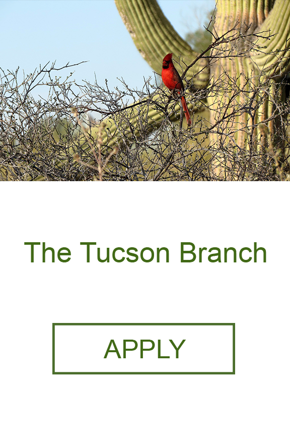 The Tucson Branch Geneva Fi Arizona Home Loans.png