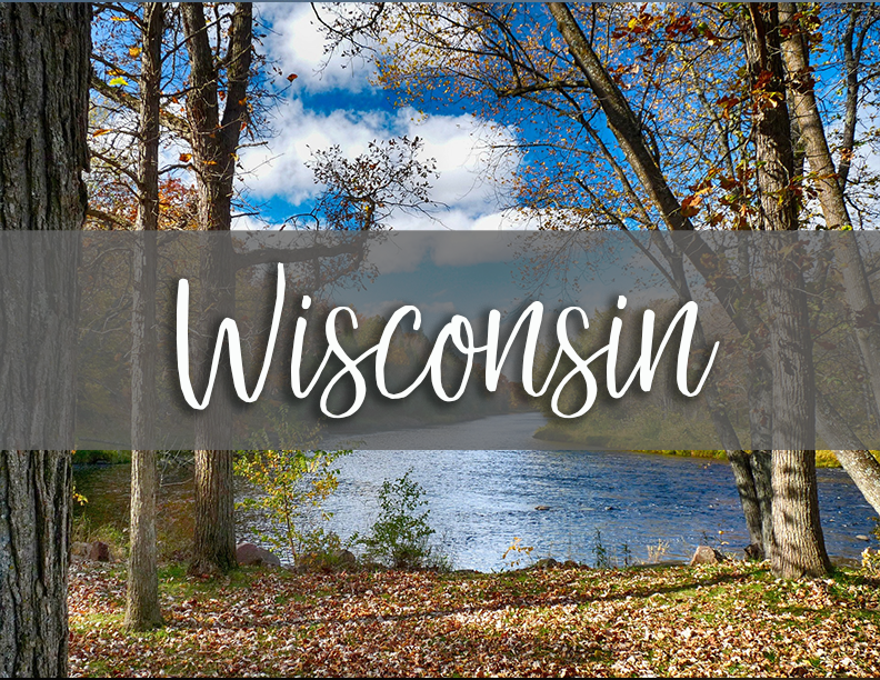 wisconsin state tab.png