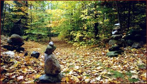 earthdance fall leaves.jpg