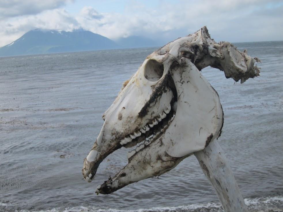Unalaska, Alaska
