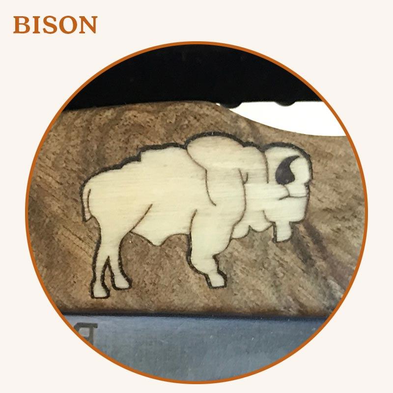 1-Bison2.jpg