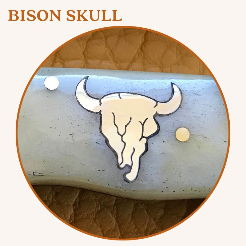 2-BisonSkull2.jpg