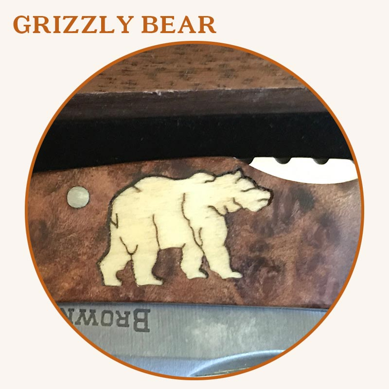 9-Grizzly-Bear2.jpg