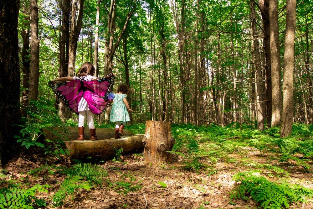 Children are Born Persons - Charlotte Mason Principle 1 | on theschoolnest.com