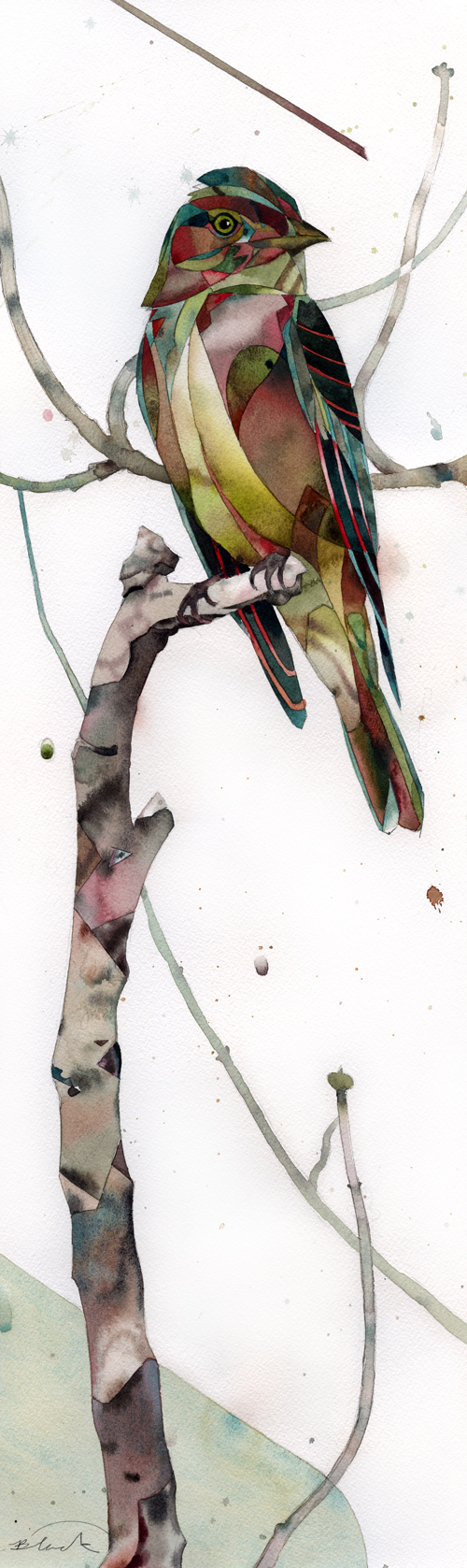 """Chirp368 viewing 26x8"""""""