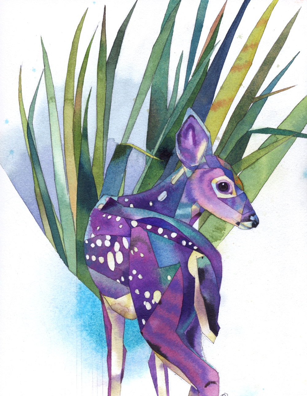 deer14w.jpg
