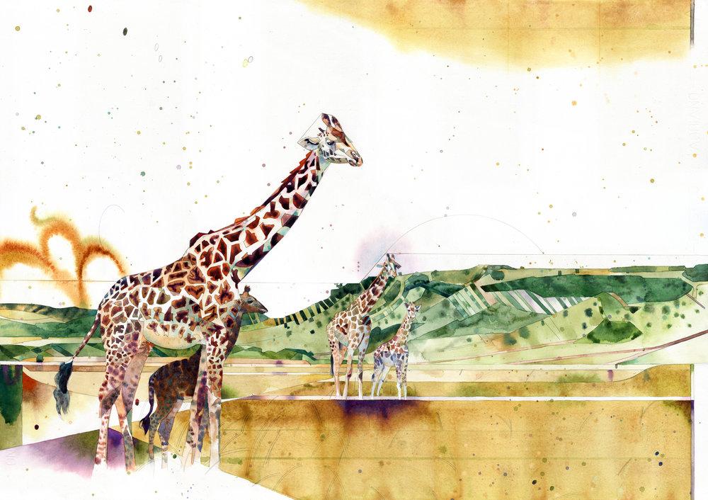 gnn giraffe w.jpg
