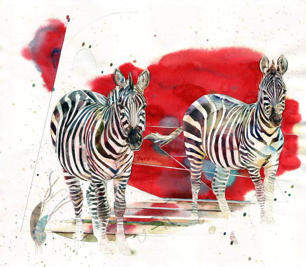 gnn zebras-builtout-w.jpg