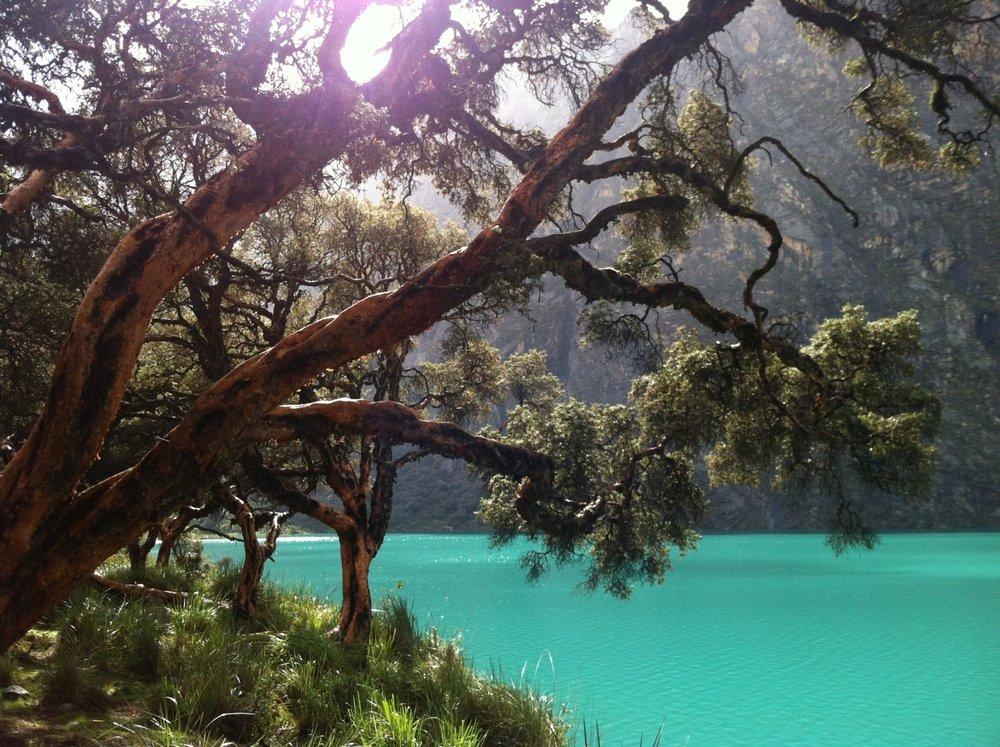 Paths to Pachamama vivid green pool