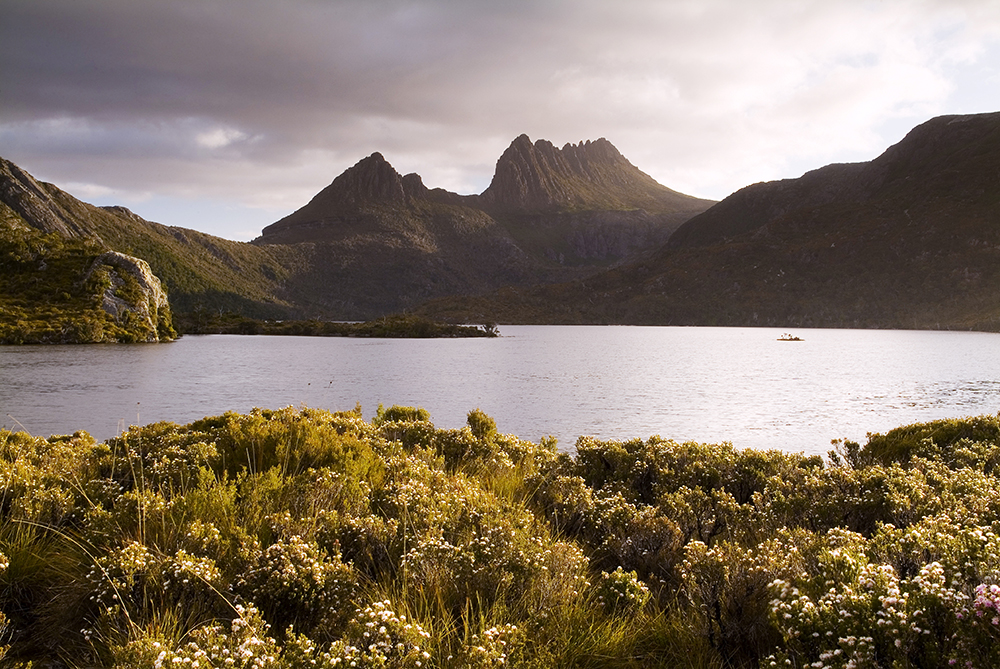 THE CLEANEST PLACE ON EARTH - TASMANIA, AUSTRALIA has the last remaining pristine & ancient rainforest, and has the cleanest air & water on the planet