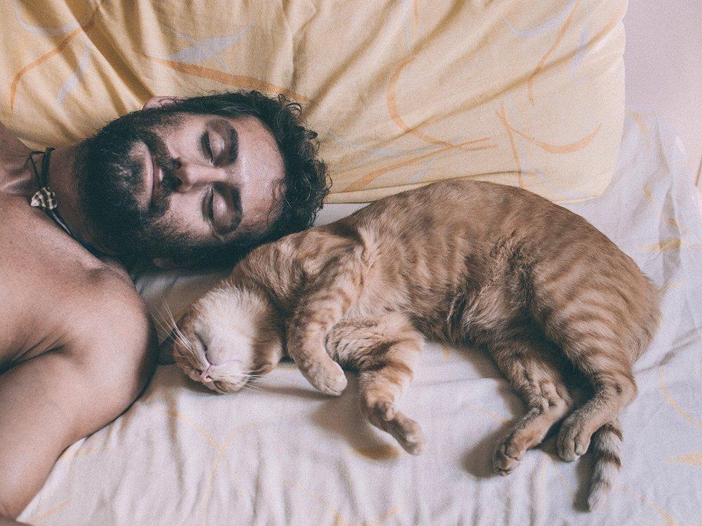 Professor-Fuzzworthy-Lets-talk-sleep.jpg