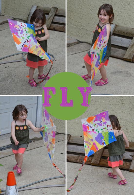 Fly-the-Kite