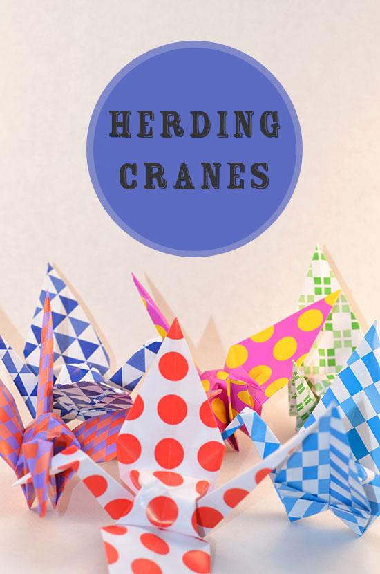Herding-Cranes