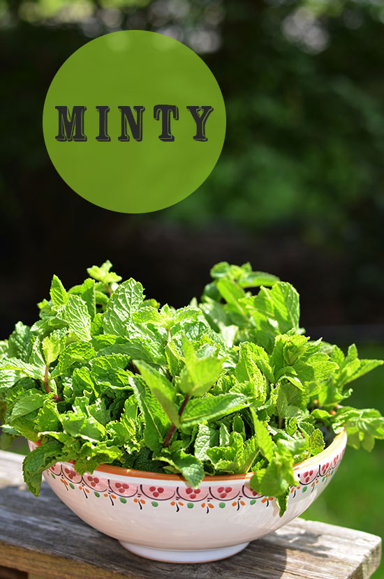 Minty-Ice-Cream