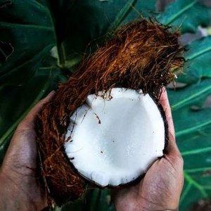 1-coconut.jpg
